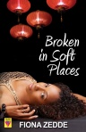 broken-in-soft-places
