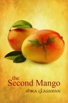 secondmangocover