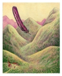 asthecrowflies